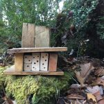 Spriggly's Native Bee Cabin