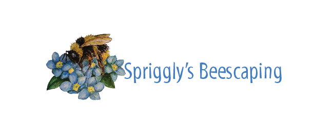 Spriggly's Horizontal_2nd try
