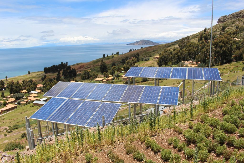Solar fields and pollinators